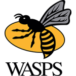 Wasps Ladies